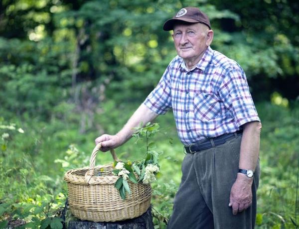 Népi gyógyászat: Gyuri bácsi gyógyteái
