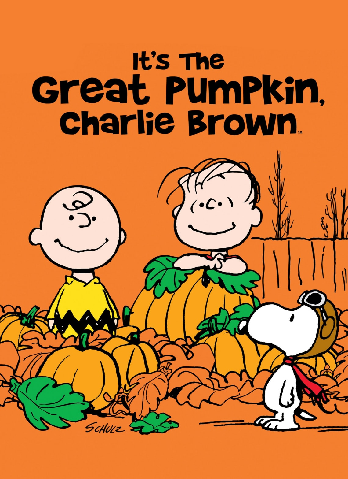 Snoopy és a Halloween