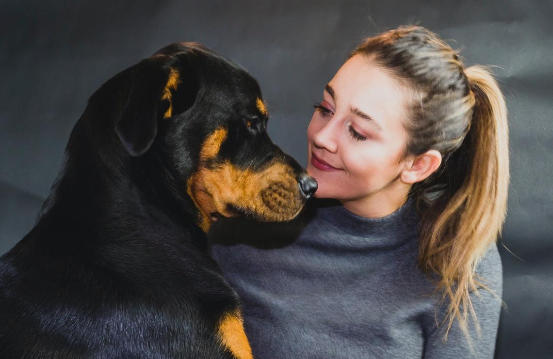 Ez az 5 legjobb házőrző kutyafajta. Egyetértesz a listával?