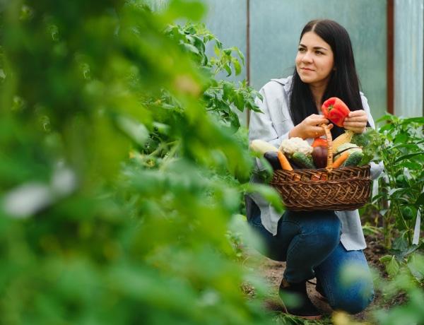 A 10 legkönnyebben termeszthető zöldség a kertben