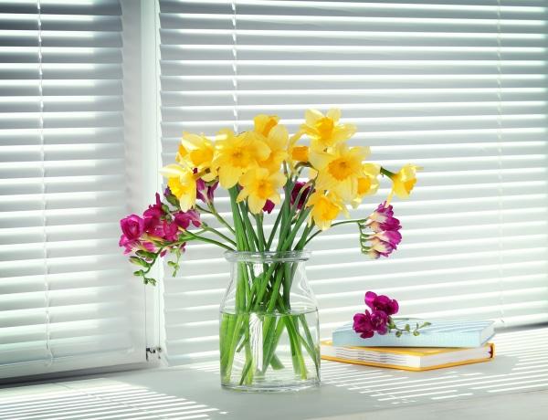 5+1 szerencsétlenséget hozó növények az otthonodban: szabadulj meg tőlük