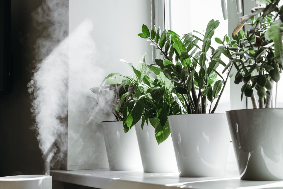 5 biztos tipp a száraz levegőjű helyiségek kellemes párásításához