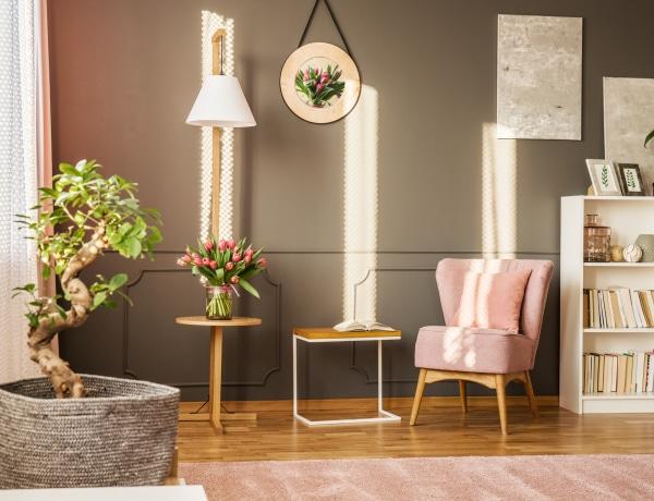 A lakásodba tötéletesen illő szobanövények a feng shui szerint
