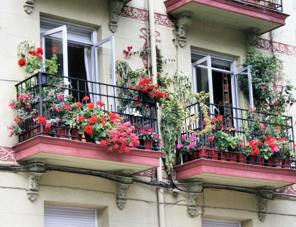 5 igénytelen virág a balkonodra
