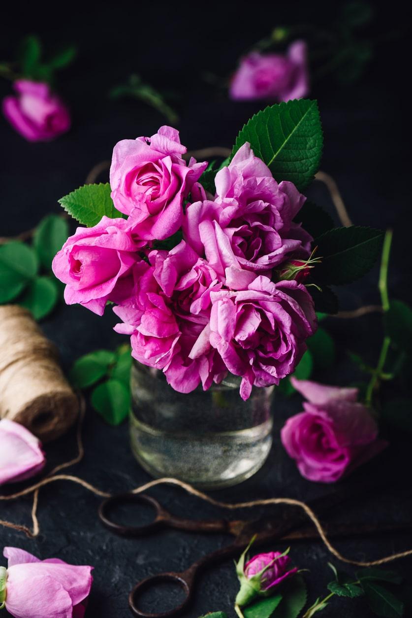 A sötétebb rózsaszín rózsa