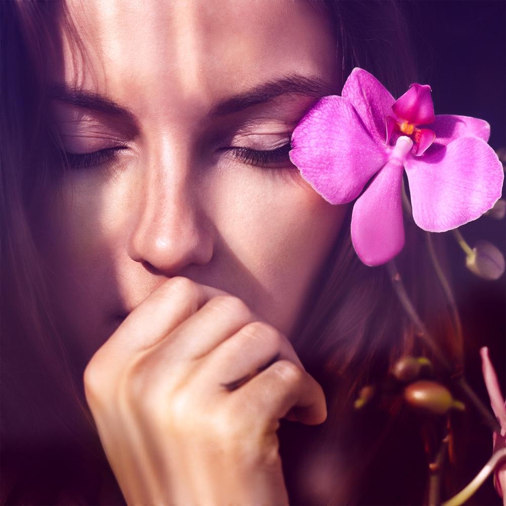 Így gondozd az orchideád – Meg fogja hálálni!