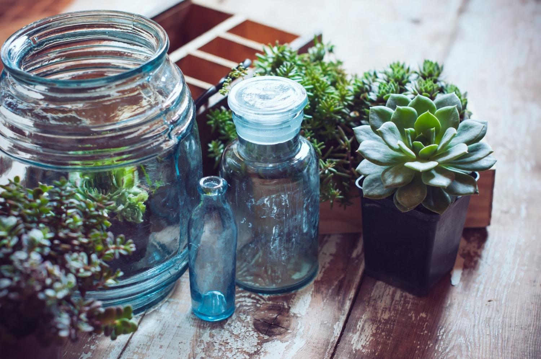 Újszerű megoldások a szobanövények izgalmas elhelyezéséhez