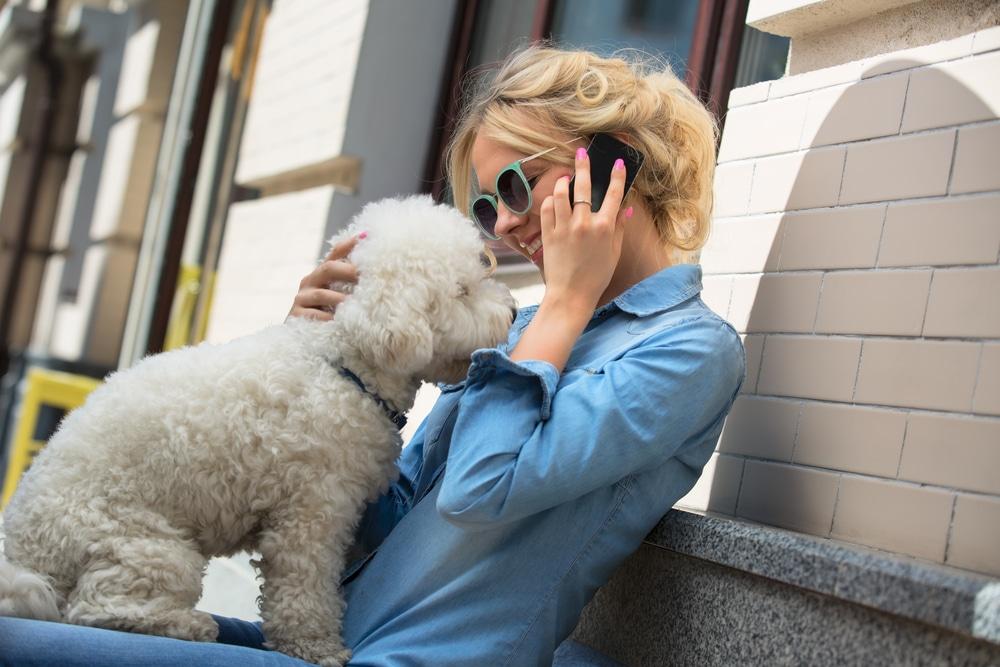 10 hihetetlen tény a kutyákról, amitől biztos leeseik az állad