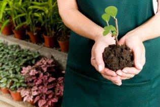 10 kérdés a kertről, amit féltél feltenni