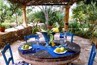 10 tipp egy mediterrán kert kialakításához
