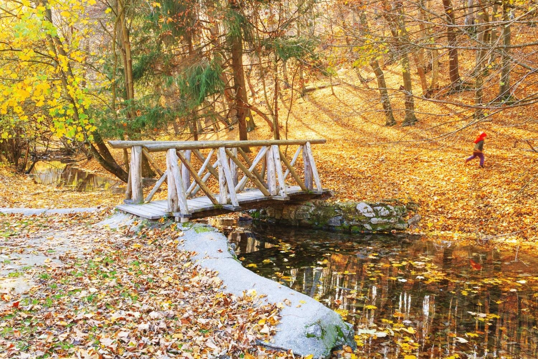 3 lélegzetelállító hazai kirándulóhely, ami ősszel szép csak igazán