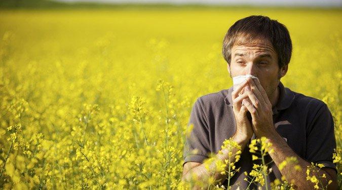 5 természetes gyógymód az allergiákra