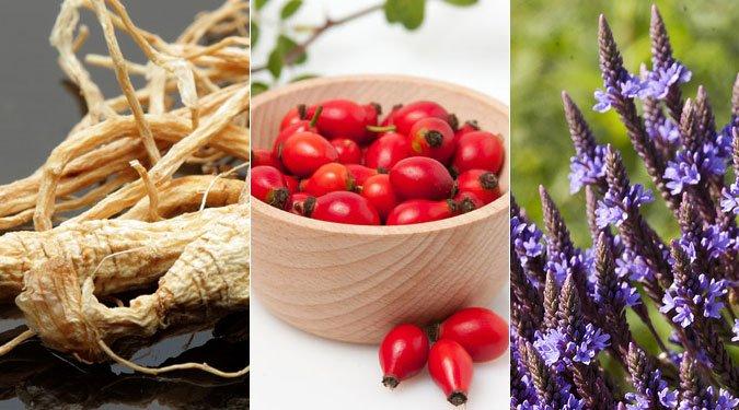 6 gyógynövény másnaposság ellen