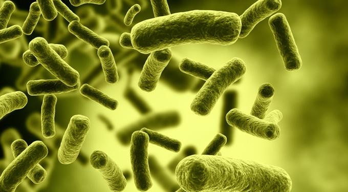 7 baktériumtelep a lakásban, amit gyakran kifelejtünk takarításkor