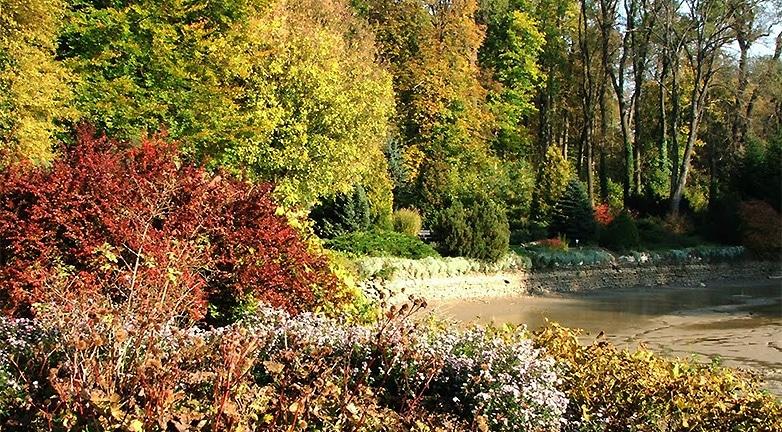 7 hazai kirándulóhely, ahol a legszebbek az őszi levelek