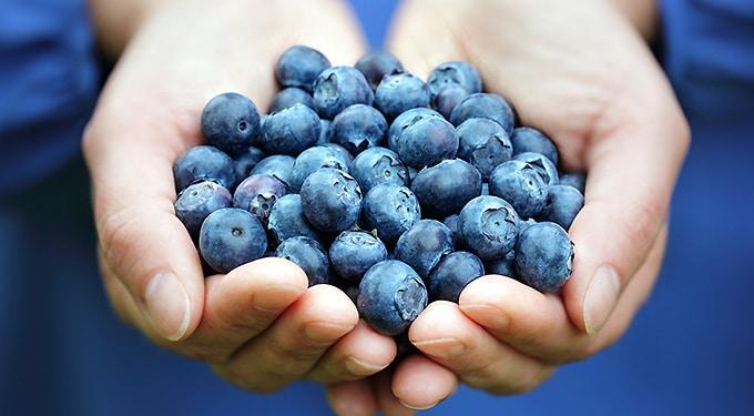 7 táplálkozási tipp a hosszú életért