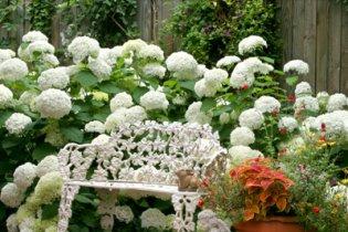 8 ötletes kert és kültéri dekoráció