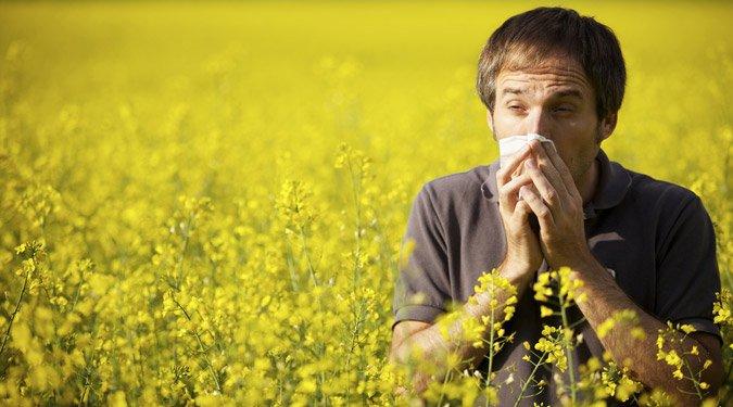A 9 leggyakoribb allergén