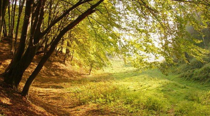 A Duna-Dráva Nemzeti Park tanösvényei