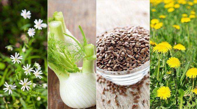 A leghatásosabb étvágycsökkentő növények