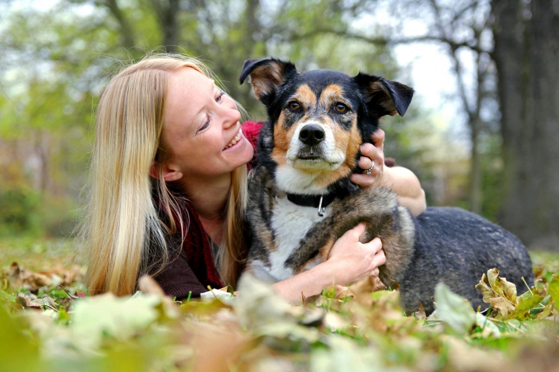 Baj a száraz orr? 6 tévhit a kutyákról