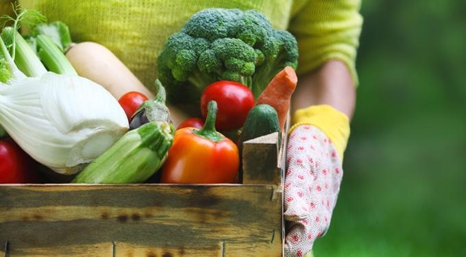 Dobj le 10 kilót a sav-bázis diétával! – Diéta mintaétrenddel