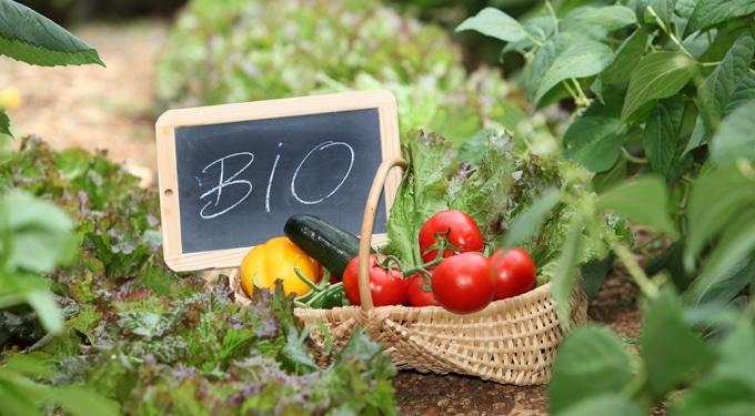 Ettől bio a bioélelmiszer! A bio termesztés szabályai