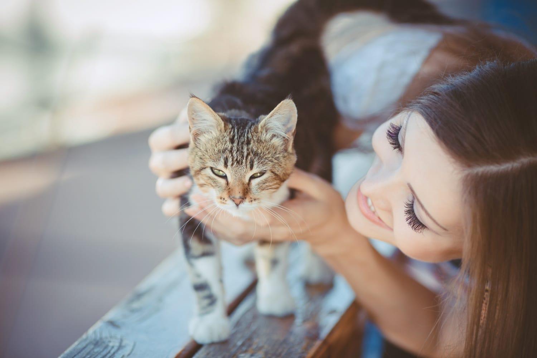 Ezek a legelképesztőbb macskarekordok
