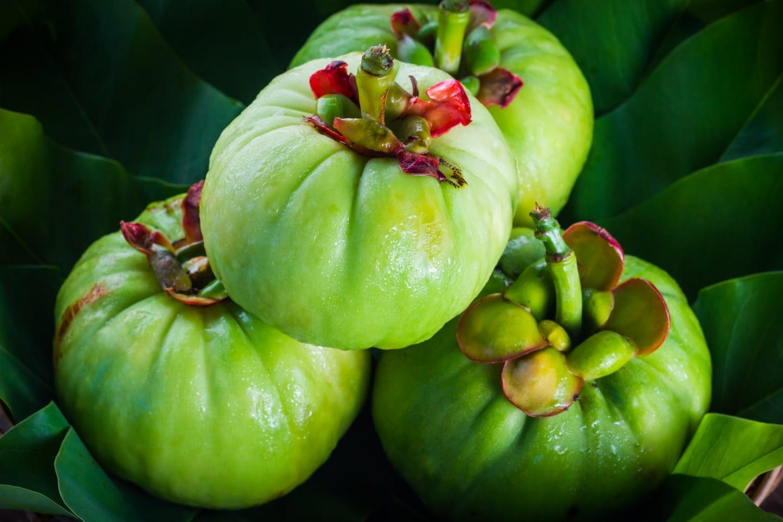 Fogyj szupergyümölccsel! Ismerd meg a Garcinia Cambogia fantasztikus hatását (x)