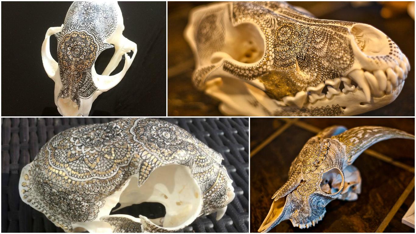 Gyönyörű, de bizarr – Mandalával díszített koponyákat készít egy archeológus