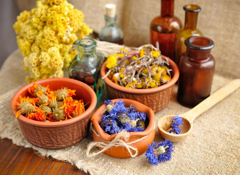 Gyomorrontás? Herpesz? Gyógynövényekkel a leggyakoribb betegségek ellen
