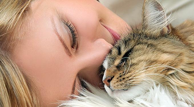 Ilyen jótékonyan hatnak lelkünkre az állatok – Bizonyított!