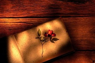 Könyvajánló: Romantikus regények