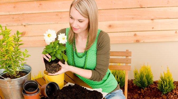 Márciusi kertészeti teendők