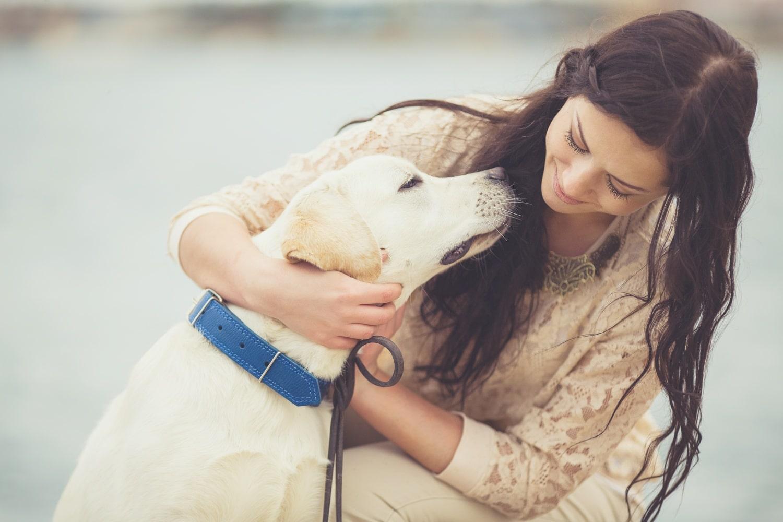 Kutyád személyiségéről sokat elárul a csillagjegye