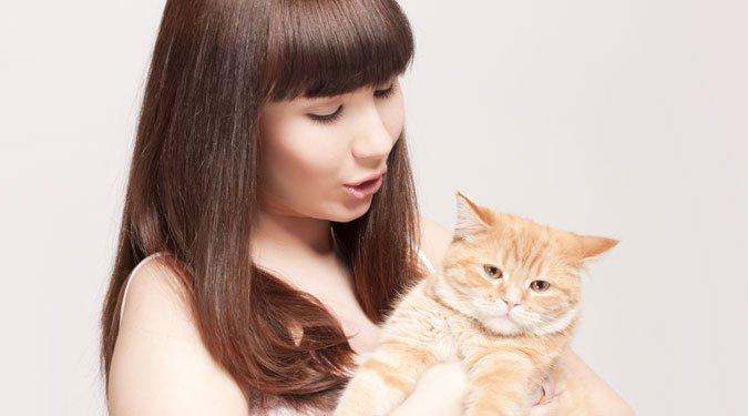 Macskák terjesztik? – Terhesség alatti toxoplazmózis