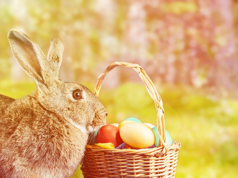Miért egy bárány a húsvét szimbóluma? 6 érdekes dolog, amit nem tudtál az ünnepről