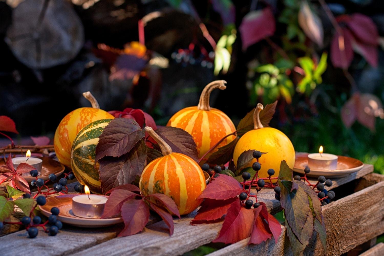 Minimális időbefektetés, maximálisan látványos őszi dekorációk