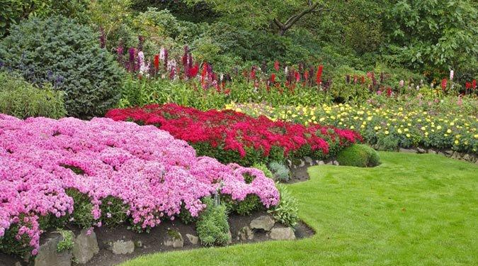 Nyári kertészeti tippek és teendők