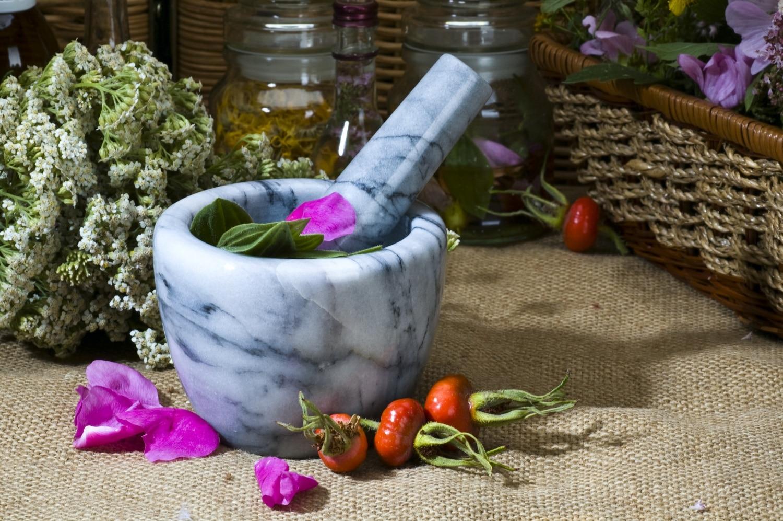 Szépség és egészség a növényekben: ilyen hatóanyagokkal kényeztet a természet