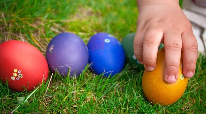 Tudtad? 8 érdekes tény a tojásról