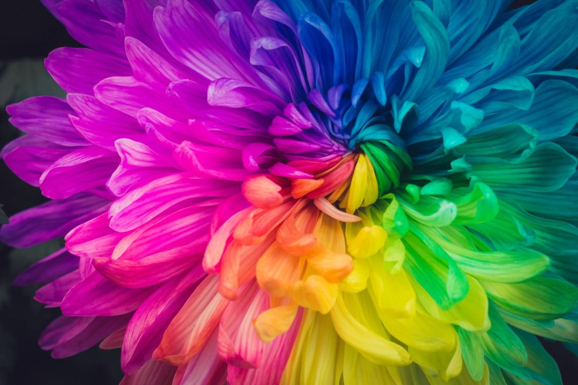 Milyen területen kell most változtatnod? Válassz egy színt, és megtudod!
