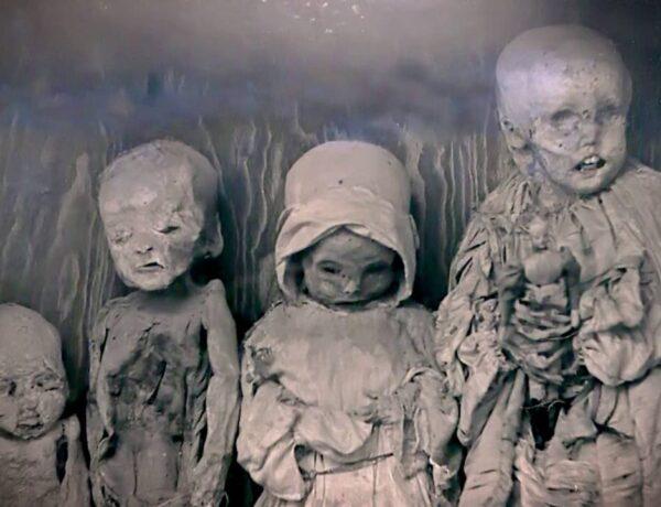 Állati péniszek, múmiák és wc-k: ezek a világ legfurább múzeumai