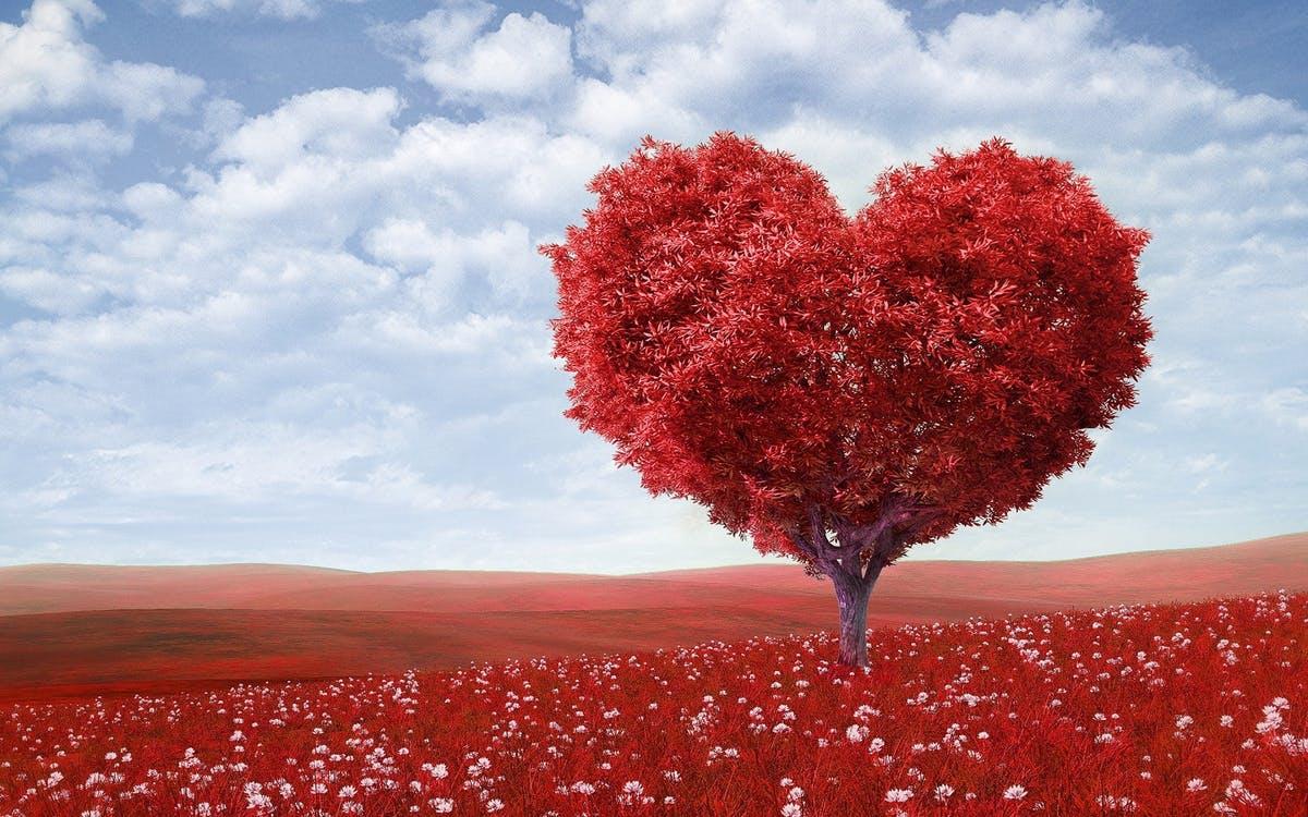 Életed során sosem éled át kétszer ugyanúgy a szerelmet - és ez így van jól!