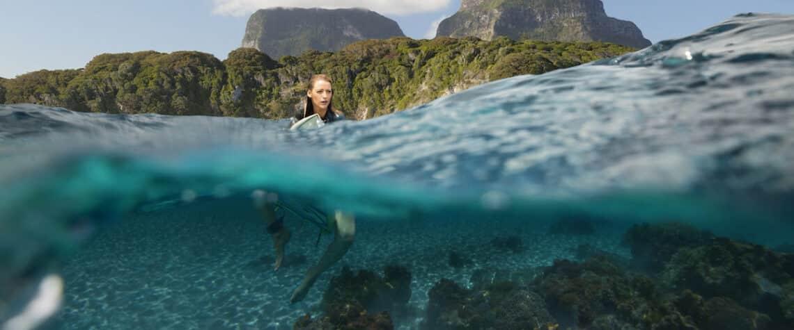 Így éld túl a cápatámadást: tengerparti nyaraláshoz kötelező tudni