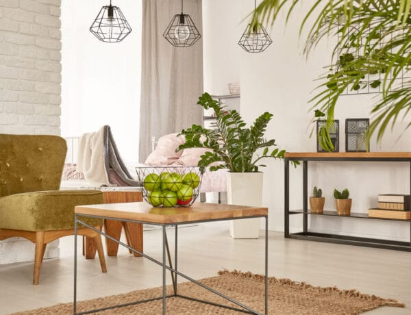 Így hatnak ránk a szobanövények – 5 ok, amiért érdemes még többet tartanunk belőle