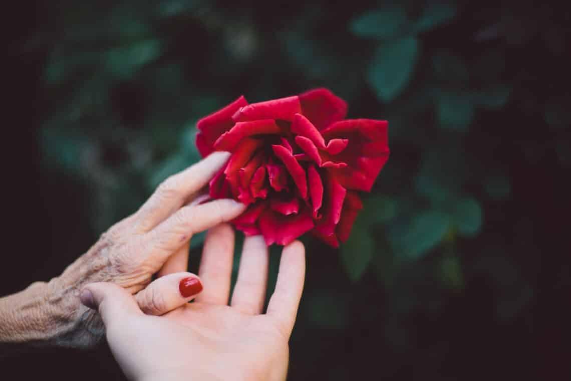 Így tudsz könnyedén jótékonykodni: 6 hétköznapi helyzet, amikben segíteni tudsz a rászorulóknak