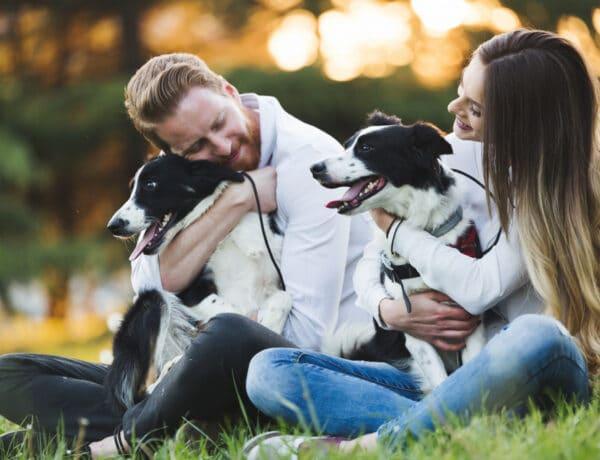 Így befolyásolja a szerelmi életedet, ha van egy háziállatod