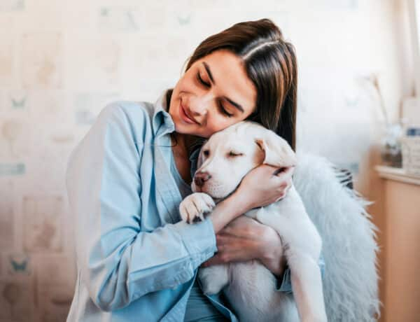 Így készít fel egy kutya arra, hogy később jó anya legyél