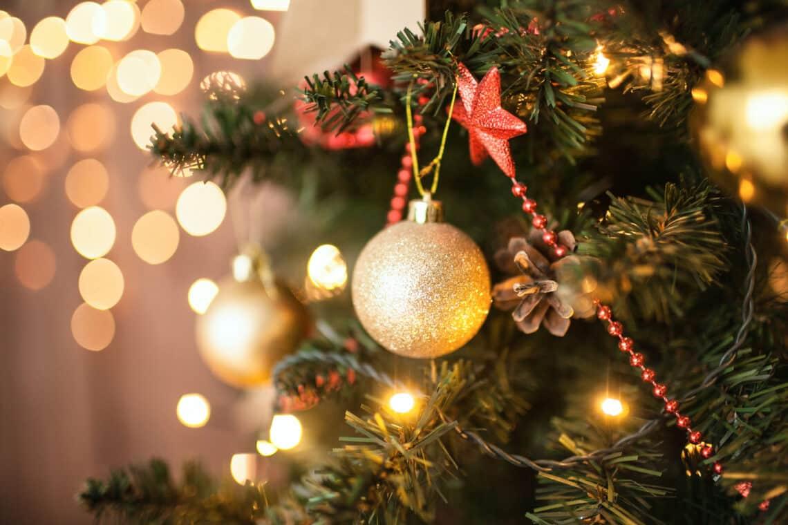 5 hasznos dolog, amire használhatod a karácsonyfáról lehullott tűleveleket